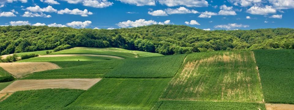 Terrain pour construction maison neuve et projet immobilier for Construction terrain